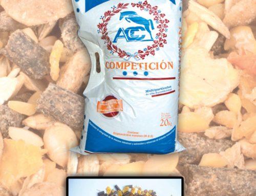 Competición 3