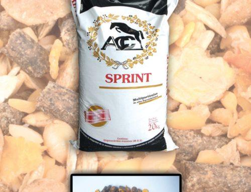 Sprint